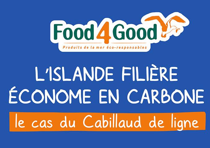 L'Islande, filière économe en carbone
